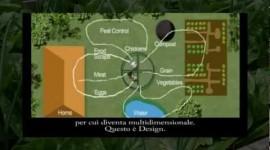 3/14 - Connessioni utili ed analisi degli elementi